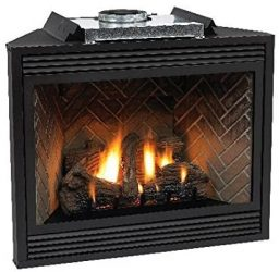 Empire-Comfort-Systems-Fireplace